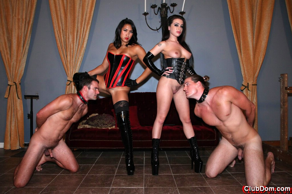 cbt and ballbusting sex clubs for singles
