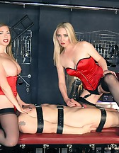 2-Way Sex Toy, pic #3