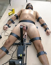 Pinned to the board, pic #14