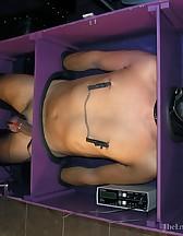 The cuck box, pic #11