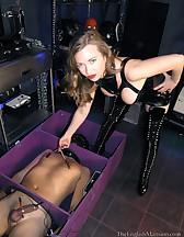 The cuck box, pic #12