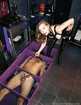 The cuck box, pic #13
