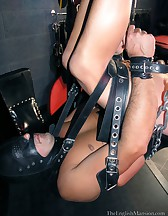 Trussed Up & Pegged, pic #2